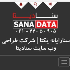 شرکت طراحی سایت سنادیتا