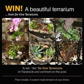 DeVine Terrariums