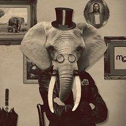 Mów Mi Słonia