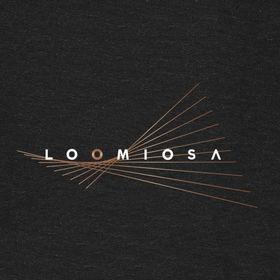 Loomiosa Ltd.