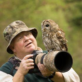 Ron McCombe Wildlife Photography Workshops