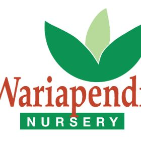 Wariapendi nursery