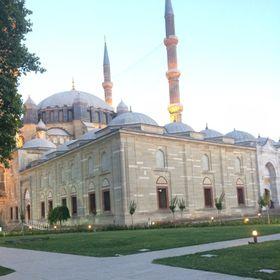 Sultan Özer