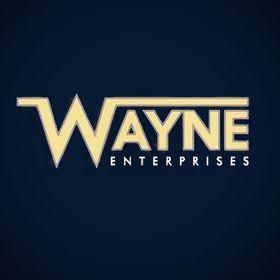 Something, Wayne Enterprises, Inc.