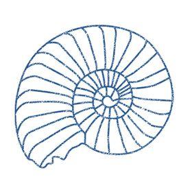 Blue Ammonite Designs