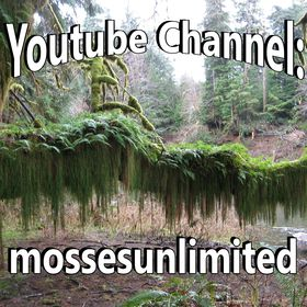 Moss Unlimited