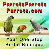 ParrotsParrotsParrots.com