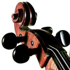 Arioso Quartet - string quartet