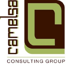 Camelsa Consulting Group
