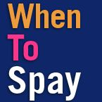 When To Spay .org