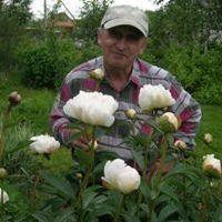 Boris Tomilov