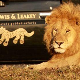 Lowis & Leakey