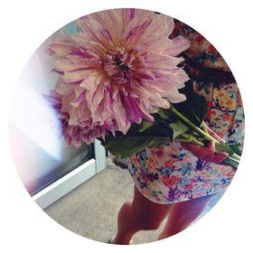 Roses Florist Auckland