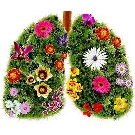 Kouření altoids
