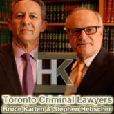 The Criminal Law Team