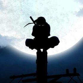 o ninja traidor m