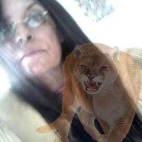 Kat Cougar