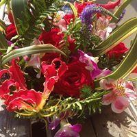 flowers..anemone's