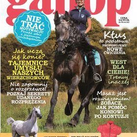 Gallop Koń&Jeździec