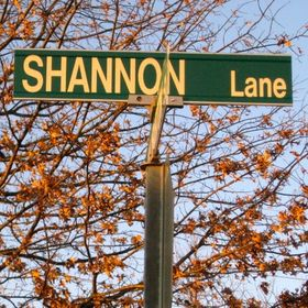 DownShannonLane Blog