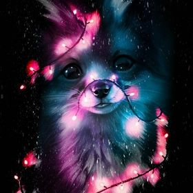 Galaxy Wolfie