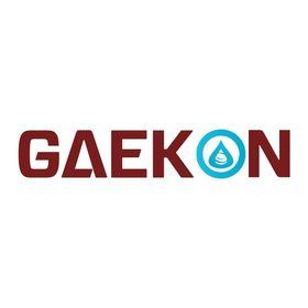 Gaekon Gaekon