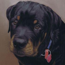 Art by Karie-Ann, pet portraits, wildlife art