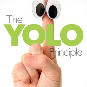 YOLO Insights