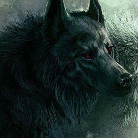 Shade Wolf