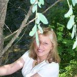 Wende Boyd