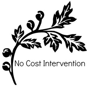 No Cost Intervention