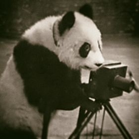Antique Photo Archive