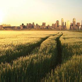Rural-Urban Divide