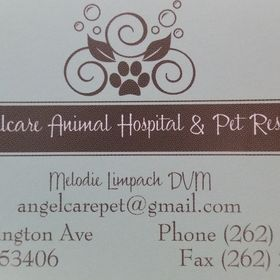Angelcare Animal Hospital & Pet Resort