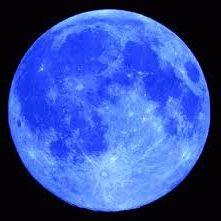 Homeschool.Ninja @Blue Moon Academy