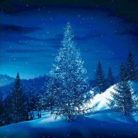 Singing Pines
