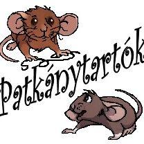 Patkány Tartók