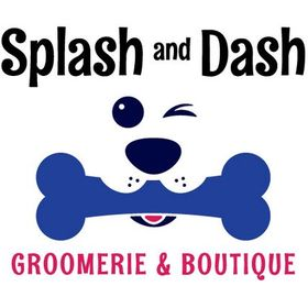 Splash and Dash for Dogs