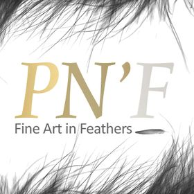 Plumes N'Feathers