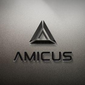 Amicus International Consulting