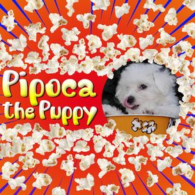 Pipoca The Puppy