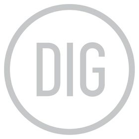 DIG: The Design Image Group