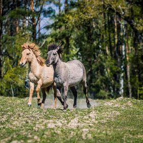 Beremytske Nature Park