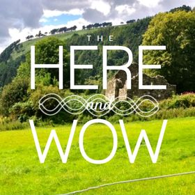 The Here and Wow