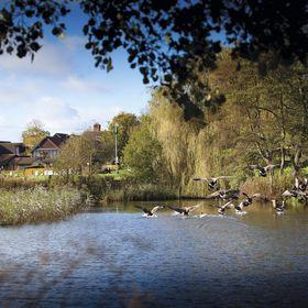 Barnham Broom Hotel, Golf and Spa