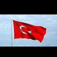 Gürkan Ergün