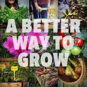 The Dirt on Dirt - Organic Gardening