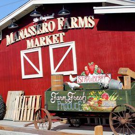 The Original Manassero Farms
