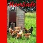 HenSafe Chicken Door Opener
