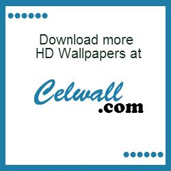 Celwall